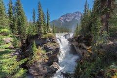 壮观的Athabasca在贾斯珀国家公园,亚伯大,加拿大下跌 库存照片