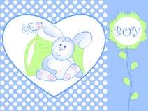 声明到达男婴兔宝宝 免版税库存照片