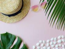 壳、热带叶子、夏天帽子和心脏形状太阳镜在桃红色背景 免版税库存照片