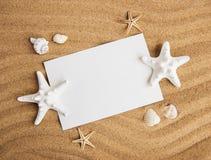 壳、seastars和一张空白的明信片 免版税图库摄影