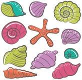 贝壳传染媒介集合 免版税库存图片