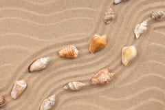 贝壳和之字形从沙子 库存照片