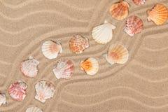 贝壳和之字形从沙子 免版税库存照片