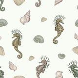 贝壳和海象无缝的样式 免版税库存图片