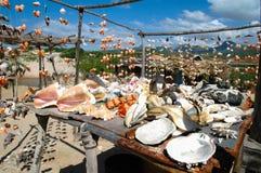 壳和海鲜 免版税库存照片