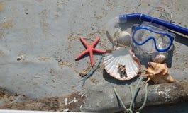 贝壳和潜水面具在老小船 免版税库存图片