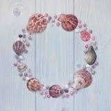 贝壳在木背景的圈子框架 扇贝壳 免版税库存照片