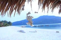 壳在海 在lepi海岛泰国 图库摄影