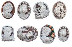 壳有浮雕的贝壳 库存照片
