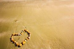 壳的心脏,在塞浦路斯金黄沙子的形状壳,背景/抽象假日照片夏天和爱的 免版税库存图片