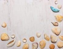 壳的样式在白色背景,顶视图, Â的 库存图片
