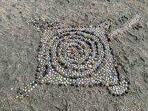 壳艺术 库存图片