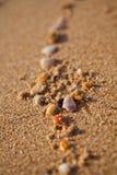壳足迹  图库摄影