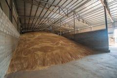 处理农业的电梯的五谷存贮 免版税库存照片