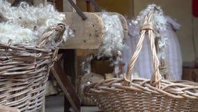 处理拟订羊毛 影视素材