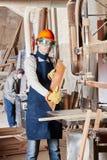 处理木头的能干木匠 库存图片