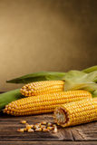 处理甜点的暴力行为的玉米行业 免版税库存图片