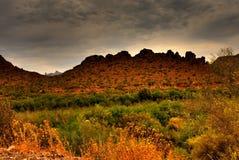 处理的沙漠风暴 免版税图库摄影