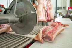 处理肉食品工业的猪肉 免版税库存照片
