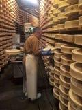 处理Fontina的典型的乳酪 免版税库存照片