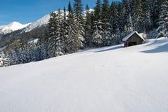 备草粮一个多雪的高山牧场地的谷仓在森林和山前面 免版税库存图片