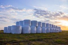备草粮准备,卷,干草卷轴,秸杆,大包,在草的一个草甸 日落 库存照片