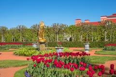 浴复合体的中国庭院 Petergof宫殿的更低的公园 大教堂圆屋顶isaac ・彼得斯堡俄国s圣徒st 免版税库存照片