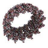 复杂沙门氏菌的针,化学结构 免版税图库摄影