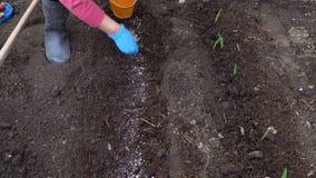 复杂肥料的介绍到土壤里 股票视频