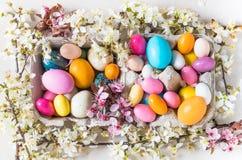 复活节五颜六色的蛋和春天花背景 免版税图库摄影