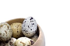 复活节假日背景 一些未煮过的鹌鹑新鲜的鸡蛋照片在白色隔绝的木碗的 我喜欢健康生活方式, h 图库摄影