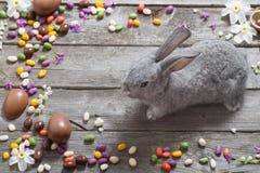 复活节兔子用在木背景的朱古力蛋 免版税库存图片