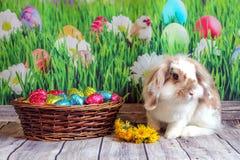复活节兔子,与复活节彩蛋篮子的逗人喜爱的兔子  免版税库存照片