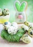 复活节卡片用在巢的鹌鹑蛋和在backgrou的一个野兔 库存图片