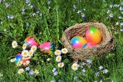 复活节巢用五颜六色的复活节彩蛋在一个开花的春天草甸 免版税库存照片