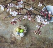 复活节巢的顶视图与白色,黄色和绿色有雀斑和春天树枝的在木背景 免版税库存照片