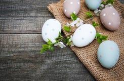 复活节彩蛋和春天开花 库存图片