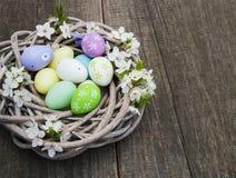 复活节彩蛋和春天开花 库存照片