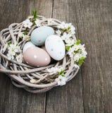复活节彩蛋和春天开花 免版税图库摄影