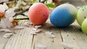 复活节彩蛋和杏仁开花摇摄,在老木地板上 股票录像