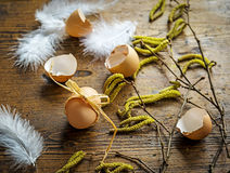 复活节彩蛋和柔荑花芽-静物画 库存照片
