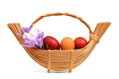 复活节彩蛋和番红花花在一个柳条筐 免版税库存图片
