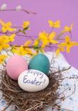 复活节彩蛋在一个实际鸟嵌套套入 库存图片
