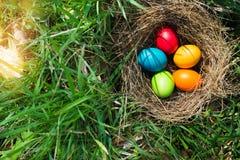 复活节彩蛋在春天草甸 库存照片