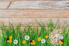 复活节彩蛋在有花的绿草草甸筑巢在与拷贝空间的土气木背景 库存图片