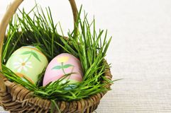 复活节彩蛋草绿色 库存照片