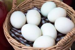 复活节彩蛋 在篮子的白色鸭子鸡蛋 关闭  免版税库存照片