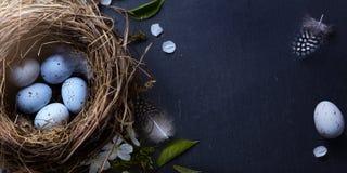 复活节快乐;复活节彩蛋在巢和春天在桌上开花 免版税库存照片