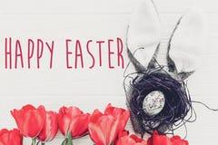 复活节愉快的文本 季节` s贺卡 兔宝宝耳朵和铁笔 图库摄影