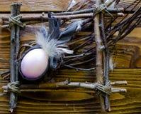 复活节构成用在枝杈框架的一个色的鸡蛋  库存图片